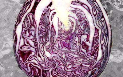 Hjemmelavet rødkål